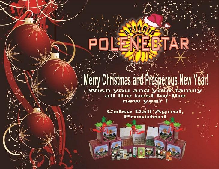 ブラジル・ポレネクター本社からのクリスマス・新年メッセージ
